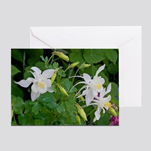 columbine4posters Greeting Card
