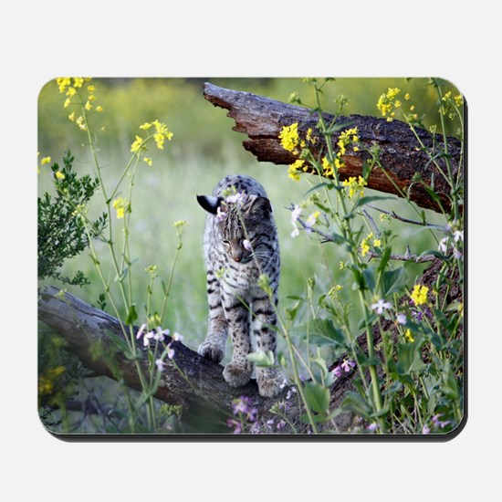 00_Cover_and_April Mousepad