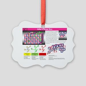 Slide22 Picture Ornament