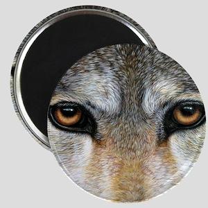 Wolf Eyes  1000 Magnet