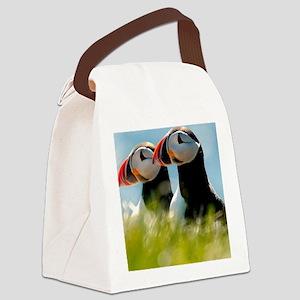 Puffin Pair 14x14 600 dpi Canvas Lunch Bag