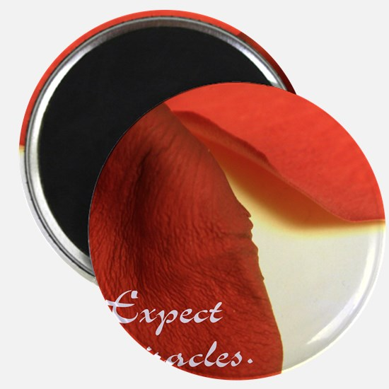 redrosepetals Magnet