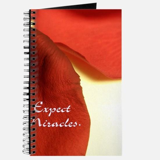 redrosepetals Journal