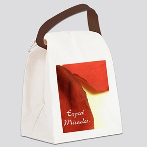 redrosepetals Canvas Lunch Bag