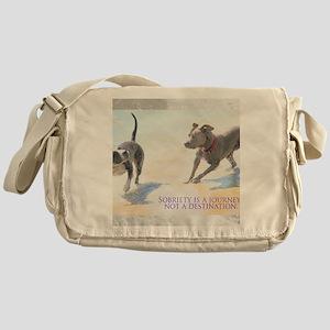 PSTR-journey2 Messenger Bag