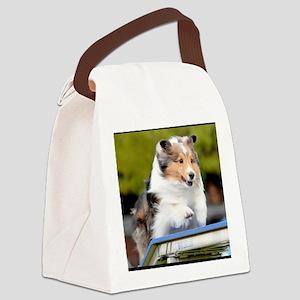 Sheltie Agility Jive Canvas Lunch Bag