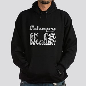 Falconry Is Excellent Hoodie (dark)