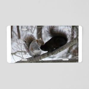 Squirrels Kissing Aluminum License Plate