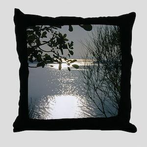 sk00098 Throw Pillow