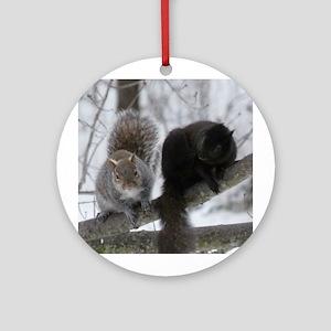 Squirrels chatting Ornament (Round)