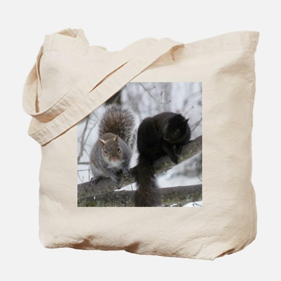 Squirrels chatting Tote Bag