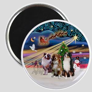 Xmas Magic - Aussie Shepherds (three) Magnet