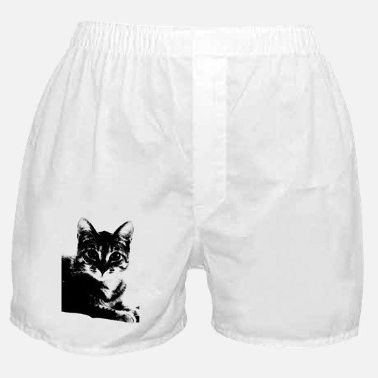 DrJones_5x8_journal Boxer Shorts