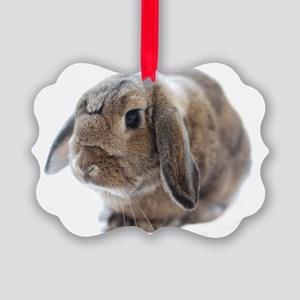 rabbit Picture Ornament