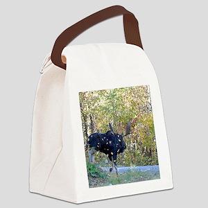 9x12_print 3 Canvas Lunch Bag