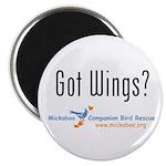 Got Wings? Magnet
