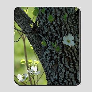 Dogwood 1 Mousepad