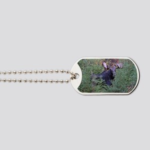 Black cap template Dog Tags