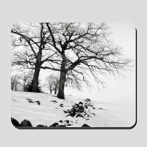 Bw oak tree 09 11x9 Mousepad