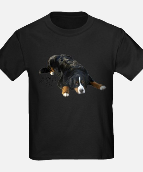 Bernese Rug Pose - Ash Grey T-Shirt