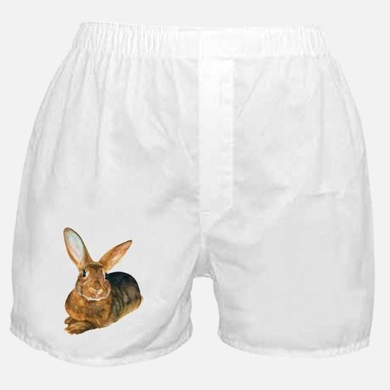 BasilWC4 Boxer Shorts