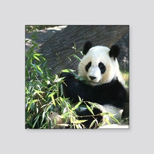 "panda2 Square Sticker 3"" x 3"""