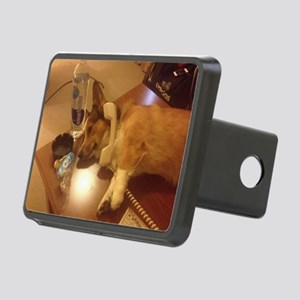 The Corg'Over Rectangular Hitch Cover