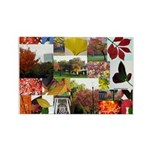 Colorful Autumn Photo Collage by Celeste Sheffey R