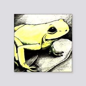 """Frog_11x11_pillow Square Sticker 3"""" x 3"""""""