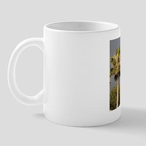IMG_4963 (2) Mug