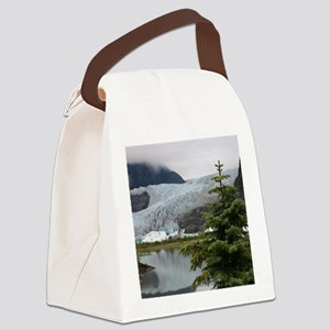 IMG_2374 Canvas Lunch Bag