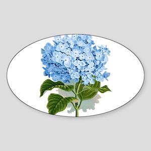 Blue hydrangea flowers Sticker