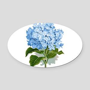 Blue hydrangea flowers Oval Car Magnet