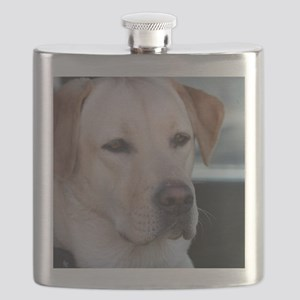 0 cover pets 521 Flask