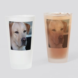 0 cover pets 521 Drinking Glass