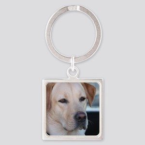 0 cover pets 521 Square Keychain