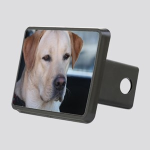 0 cover pets 521 Rectangular Hitch Cover
