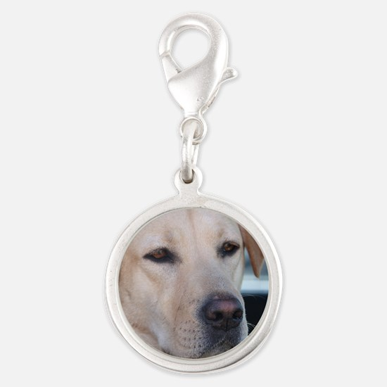 0 cover pets 521 Silver Round Charm