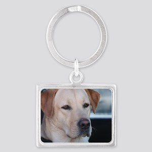 0 cover pets 521 Landscape Keychain