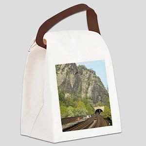 DSCN0448 Canvas Lunch Bag