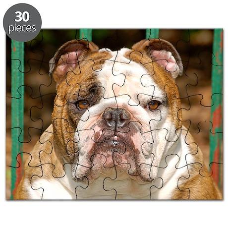 2-0 - cover - dsc_0010 Puzzle