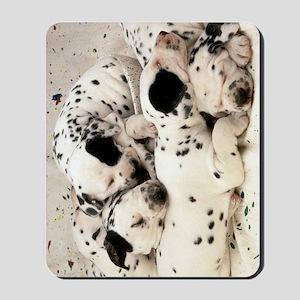 Dalmation journal Mousepad