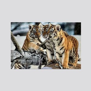 Tiger Cubs in the Snow Rectangle Magnet