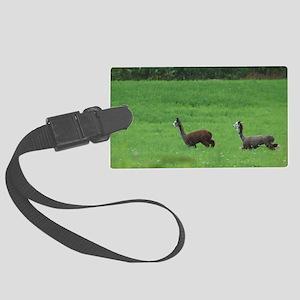 alpacas Large Luggage Tag