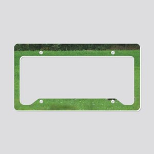 alpacas License Plate Holder
