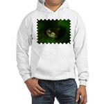 Lazy Frog Hooded Sweatshirt