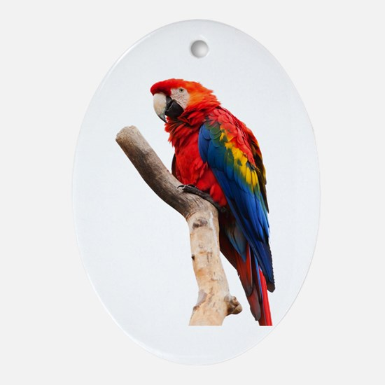 scarlet macaw peace love Ornament (Oval)