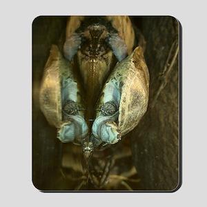 Amazon Turtle 23x35 Mousepad