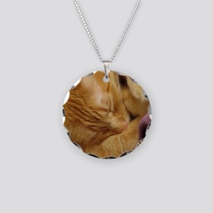 Sleepy Tiger Necklace Circle Charm
