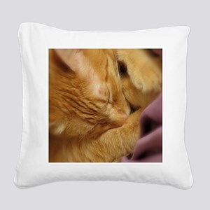 Sleepy Tiger Square Canvas Pillow